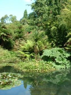 Lost Gardens of Heligan, St Austell, Cornwall